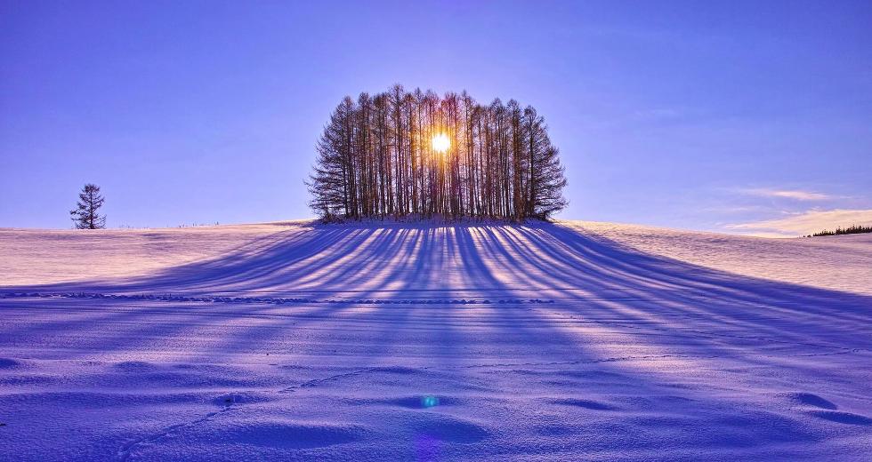 winter-sunrise-behind-the-trees-nature-hd-wallpaper-1920x1200-9534edit