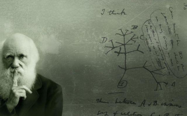 La teoria evolutiva di Darwin