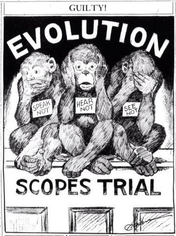 Il processo delle scimmie